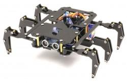 ROBUG Arduino Based Hexapod Robot Kit (Black) - Thumbnail