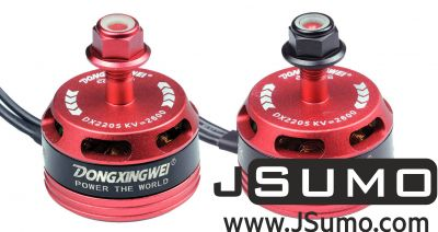 - DX2205 2600KV CW/CCW Racing Brushless Motor Set