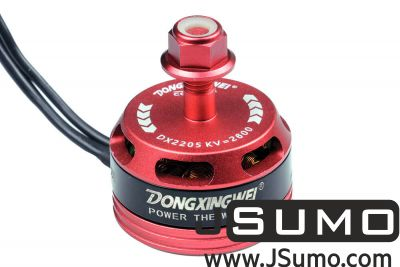 - DX2205 2600KV CW/CCW Racing Brushless Motor Set (1)